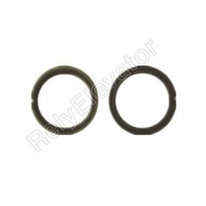 Otis Oil Seal For 13VTR
