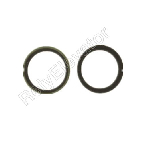 Otis Oil Seal For 17CT
